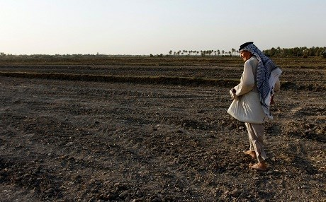 An Iraqi man walks on a dry field in an area affected by drought in the Mishkhab region, central Iraq, some twenty-five kilometres from Najaf. Photo: Haidar Hamdani / AFP